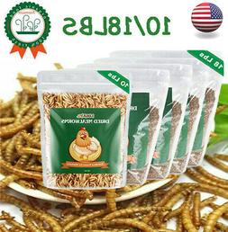 10/18 LBS Dried Mealworms for Wild Birds Food Blue Bird Chic