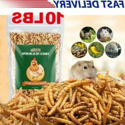 10 LBS Bulk Dried Mealworms for Wild Birds Food Blue Bird Ch