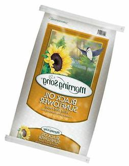 Morning Song 11407 Black Oil Sunflower Wild Bird Food, 20-Po