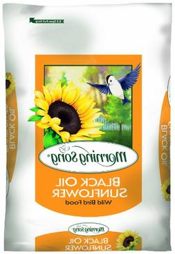 Morning Song 11410 Black Oil Sunflower Wild Bird Food, 50-Po