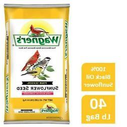 40 LB Wagners Four Season Sunflower Wild Bird Food