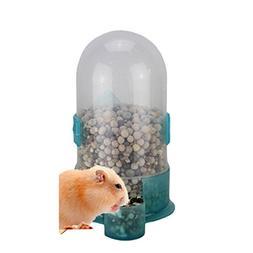 Wildgirl Hamster Bird Small Animal Feeding Drinking Bowl Wat