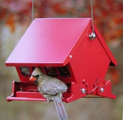 "Audubon  ""Mini""  Absolute  Squirrel Resistant  Bird Feeder"