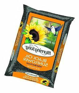 Morning Song Black Oil Sunflower, 10-Pound