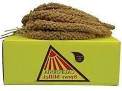 California Golden Spray Millet - beloved by all Birds Parrot