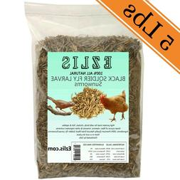 Dried Black Soldier Fly Larvae - Dried Sunworms 5Lbs - Chick