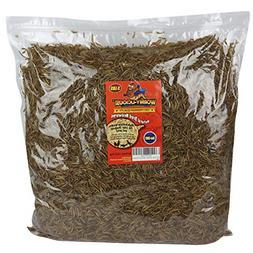 Dried Meal Worms Bulk Treats Chickens Wild Birds Food Backya