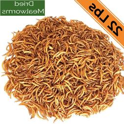 Dried Mealworms 22Lbs - Chickens Food Birds Treats Fish Rept