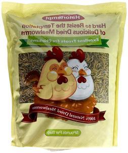 Dried Mealworms 5LBS Bulk for Wild Birds Food Blue Bird Chic