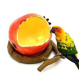 WANGDAFANG Fruit Styling Birds Feeder Bowl Water Feeding Bow