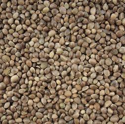 Hemp Seed Bird Parrot Food - Industrial Hemp