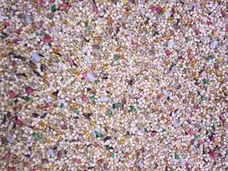 higgins Dynasty Vita Finch parakeet seed mix breeders millet