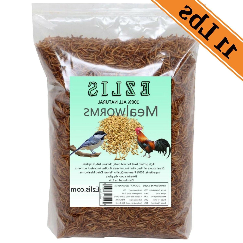 11lbs dried mealworms bulk gmo free wild