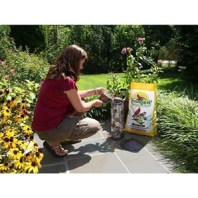40 Wagners Season Sunflower Food