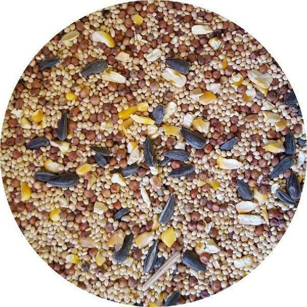 40 Wagners Season Sunflower Corn Milo