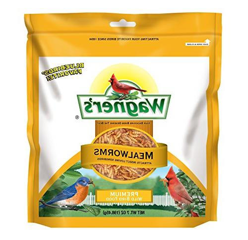 58001 mealworms