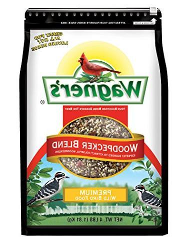 62063 woodpecker wild bird food