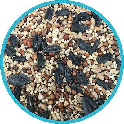 Bird Food Seed Balanced Vitamins & - 40 lbs