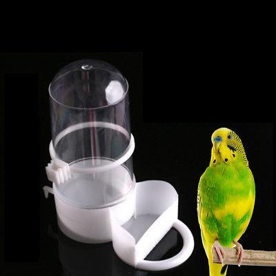 bird pet drinker feeder automatic food waterer