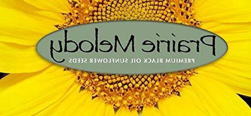 Prairie Melody Premium Oil Sunflower Bird Pesticide Free,