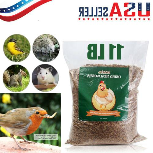 bulk dry mealworms wild birds