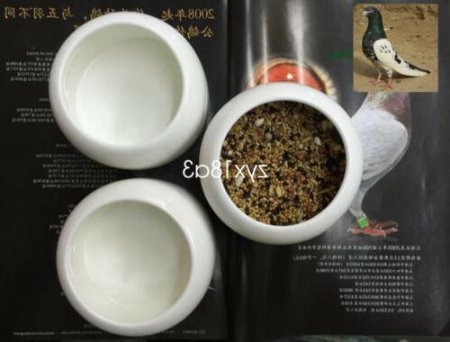 dove suspended feeder drinker food birds pigeon accessories