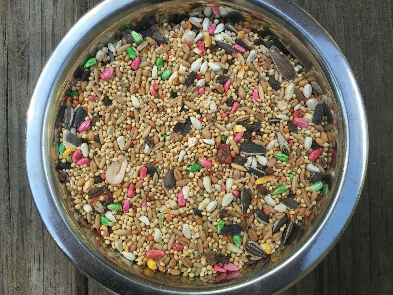 Dynasty seed mix small bird food