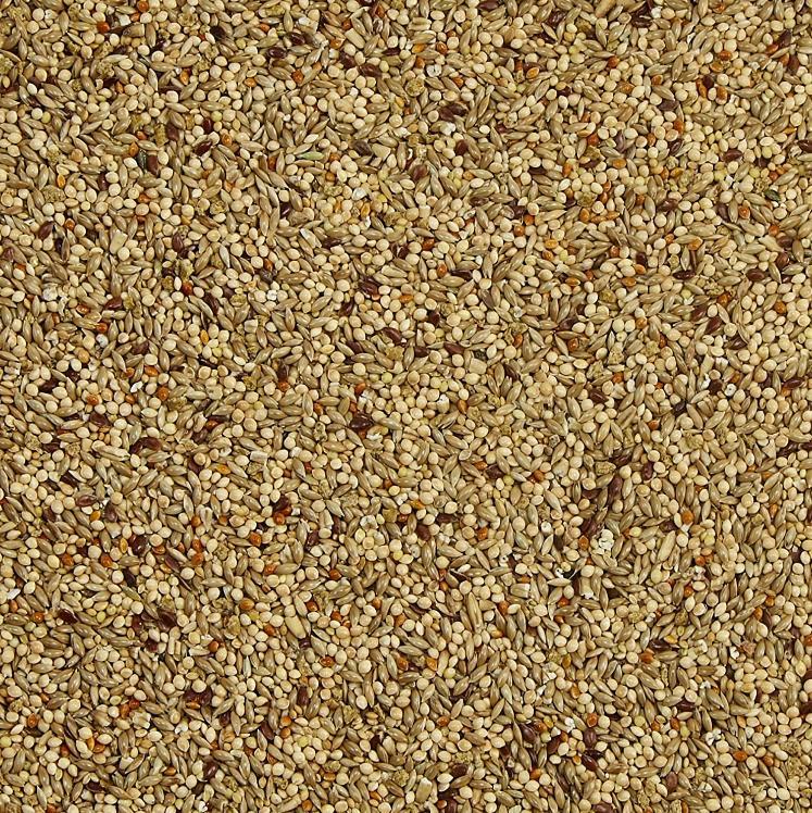 Finches Seeds No Colors 2lb,25lb