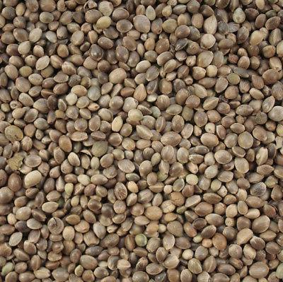 hemp seed bird parrot food industrial hemp