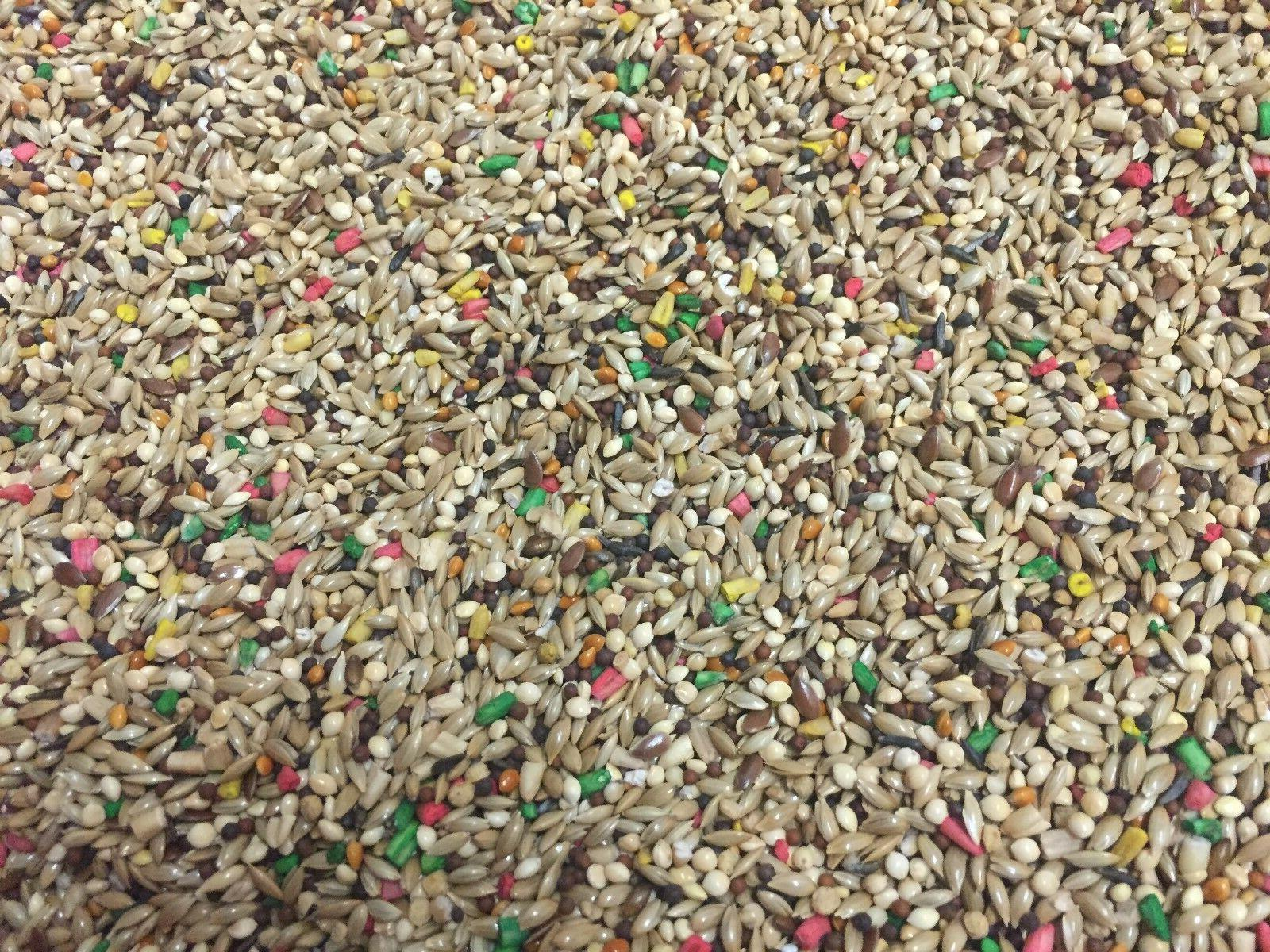 Higgins Dynasty seed mix breeders millet small bird