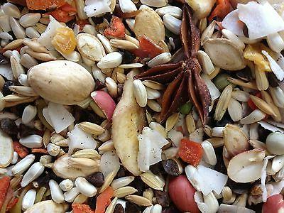 hookbill cuisine bird food medium to large