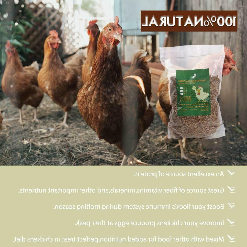 Non-GMO Fit Birds Chickens Reptile Turtles lbs USA
