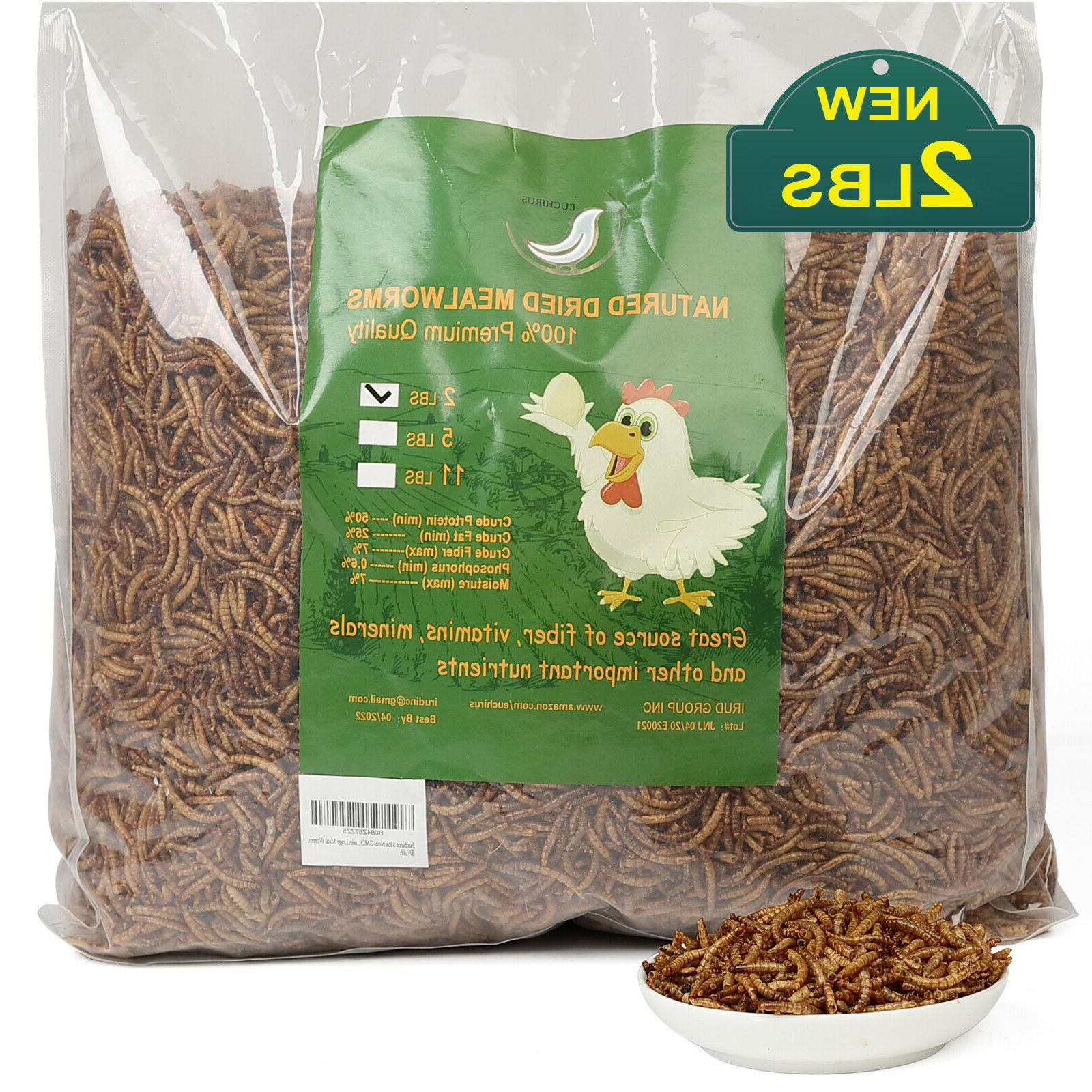 non gmo dried mealworms fit for birds