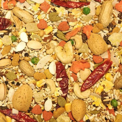 safflower large parrot gold diet bird nut