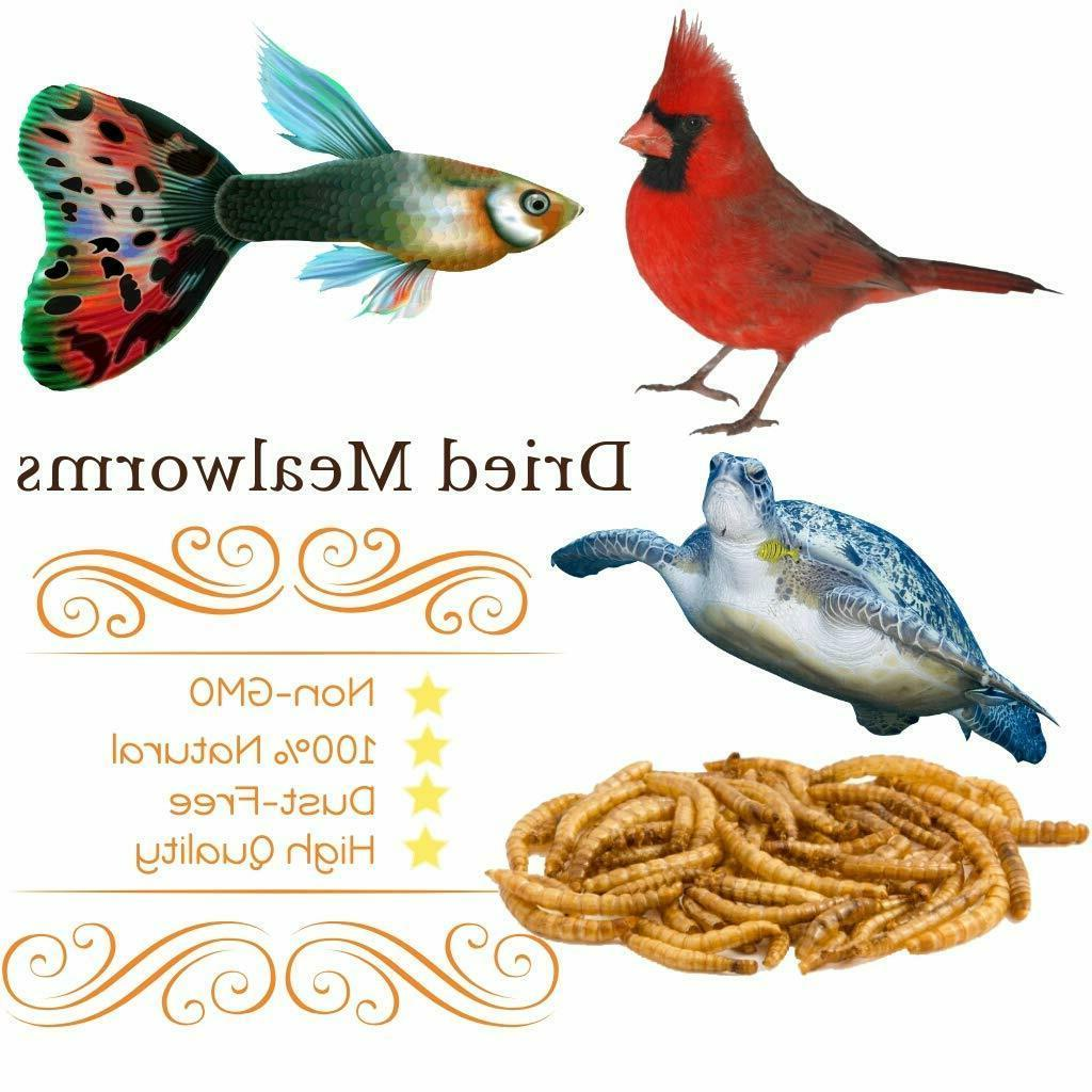 Wholesale Dried for Birds Food Blue Bird Chickens Treats