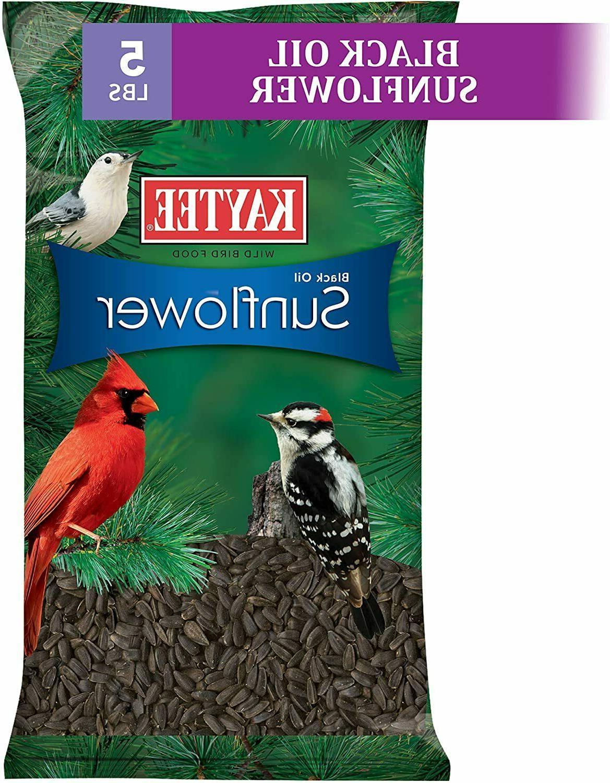 Kaytee Wild Bird Food Black Oil Sunflower Sunflower Bird See