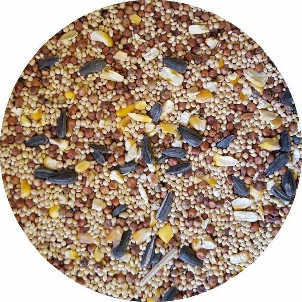 Wild Bird Mix Feed Year Round