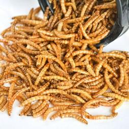Lot Dried Mealworms Non-GMO Organic for Wild Blue Bird Food