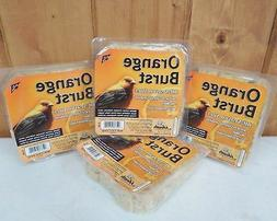 Orange Burst Suet ~ Wild Bird Food ~ No Melt ~ New ~ Free S