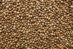 Organic Hemp Seeds RAW Bird, VEGAN FOOD CANABIS SEEDS BIO 1L