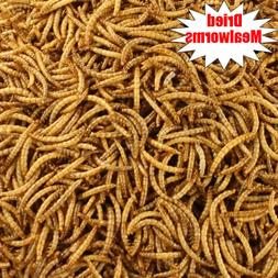 Wholesale Bulk Dried Mealworms for Wild Birds Food Blue Bird